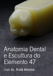 Anatomia Dental e Escultura do Elemento 47