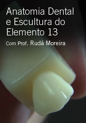 Anatomia Dental e Escultura do Elemento 13