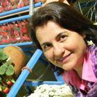Dra. Maria Georgina de Olivira Alvares (Cirurgiã-Dentista)