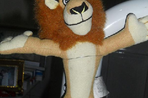 This toy is in my chair and when i begin the treatment i ask to patient look it ! I speak: Do you assit Madagascar cartoon? Look ! who is the king of animals? Is a cat? ...or dog? so , the patient stay thinking and i m doing my work, fast, without pain!