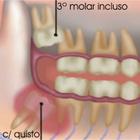 Dra. Rody Guimarães (Cirurgiã-Dentista)