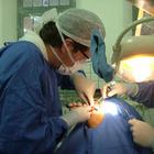 Dr. Fernando Cerci (Cirurgião-Dentista)