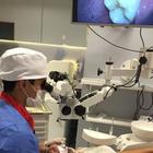 Dr. Victor Nóbrega Costa (Cirurgião-Dentista)