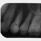 Dr. Victor Cunha (Cirurgião-Dentista)