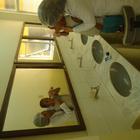 Dra. Raphaella do Amaral Velloso (Cirurgiã-Dentista)