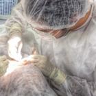 Dr. Neemias da Silva Souza (Cirurgião-Dentista)