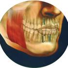 Dr. Bruno José de Oliveira (Cirurgião Bucomaxilofacial e Implantodonti)