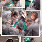 Dra. Nayane Nunes (Cirurgiã-Dentista)